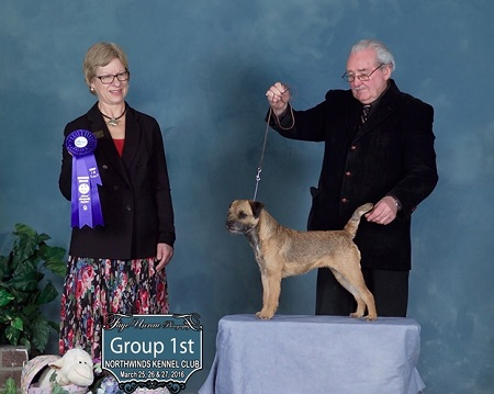 GCH CONUNDRUM ENCHANTED BOLDWIND
